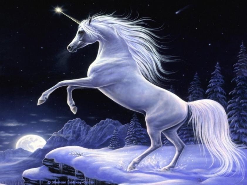 unicorn-08